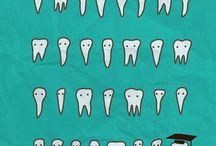 hampaita!