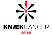 Knæk Cancer 2014