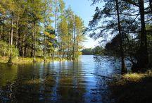 North Carolina State Parks / Images of North Carolina State Parks