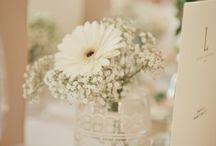 Una flor especial :)