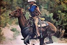 marlboro man or horses
