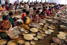 Cashew nut Factory
