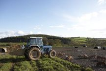 farming grants