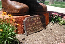 El_Campesino / Peter Lopez created the beautiful monument in the historic Plaza Park in Las Vegas, NM. To immortalize the local history, he used the died tree. This unique technique and his artistic inspiration helped to make the local landscape beautiful and organic.