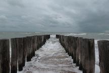 World ~ The Sea