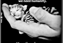 human kindness / more of this needed