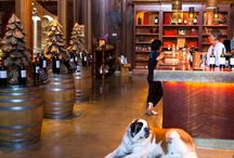 Beautiful Sonoma Wineries
