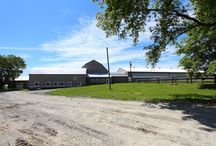 Horse Farm Renovations / Stonewood Horse Equestrian Revitalization.  From an abandoned horse barn, arena, tack room and paddocks comes to life what is today a state of the art premier horse equestrian!