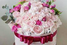 kvetinove boxi