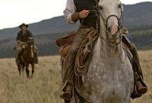 Kovbojové