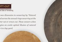 """Natural Butt-Cut Veneers / Butt-Cut veneers are yet another new dimension to veneering by """"Natural veneers"""" in which the logs are sliced across the annual rings occurring at the ends as opposed to standard quarter cut or crown cut. This veneers when laid out well onto veneer panels give an exotic optical illusion of natural logs stacked onto each other in a log-yard."""