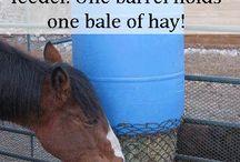 Hestestalden