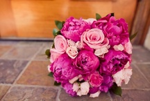 The Perfect Plan Floral Design / The Perfect Plan Events is a Floral Design and Wedding & Event Planning Company located in Fort Worth, Texas.  We are proud to serve DFW with all the latest and greatest trends in the wedding industry today! / by Sabrina Renteria