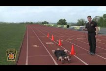 Workout agility drills