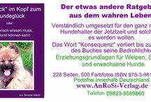 Klick-im-Kopf / Hunde