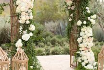 Under His Covering (Chuppah)