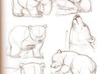Teddy animals