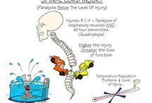 medical surgical nsg