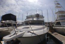 Boat Carver 36 / Gelcoat System