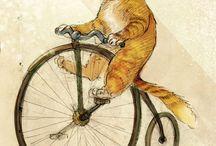 Cats / Cats, kitties...