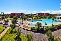 Villas et Appartement / Location d'appartement de qualité, villas de standing avec piscines et jardins, charmante maisons d'hôtes et Riad à Marrakech. Profitez de votre voyage à Marrakech, spa privé, superbe piscines, jardin de plaisir et soleil splendide, des conditions préalables pour tous les visiteurs de la ville de Marrakech