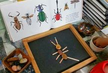 insect inspired activities