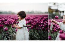 Amsterdam Tulips Photographer