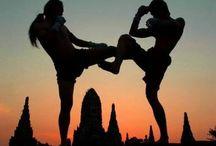 Fitness&Fight&Mind