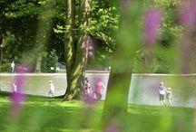 Le Havre, côté jardins / Le Havre, ses parcs et jardins vous souhaitent la bienvenue.  Laissez-vous surprendre !