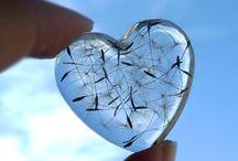 Unique Hearts