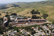Real Estate Headlines / Local Silicon Valley/Bay Area Housing and Real Estate News