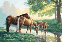 konie na tkaninę