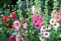 Tatouage floral Alice