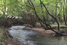 Kalavrita, Greece (Zachlorou area) Καλάβρυτα, Ζαχλωρού