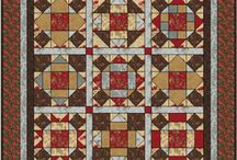 BOM quilts and Sampler quilts / by Rita Meditz