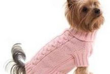 πλεκτά ρούχα για σκύλους