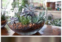 floral jars