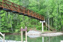 Trails / Trails for you to hike and discover Tennessee's natural beauty!