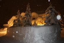 Valdez in the snow of 2012!