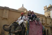 Elephant Voyage -  Day with Elephant / An incredible experience! In the walled city of Jaipur in Rajasthan, India, we will give you the opportunity to share a moment of the daily life of elephants and form an eternal bond of friendship with them and forget the hustle bustle of our daily life.