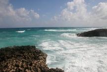 Cozumel / by Beach.com