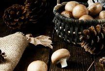 Wild Mushroom Cottage