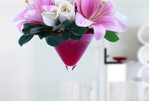 Flower Delivery Ajman / Online Flower Delivery in Ajman @ http://www.flowerdeliveryuae.ae/flower-delivery-ajman-47.html