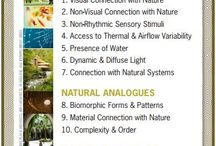 Biophilic Design in Healthcare / Inspired by nature, biophilic designs in healing environments can improve the overall health and well-being of its patients.