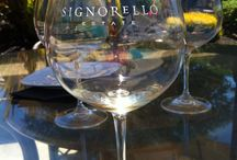 Tessora in Napa Valley / Rule #1: You only live once. #LoveTessora