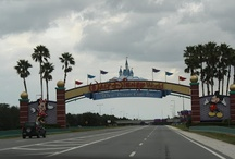 Walt Disney World / by Real Mom Reviews