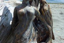 Mermaids Driftwood