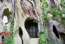 Strange houses ?_?