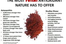 Astaxanthin - the most powerful antioxidant (nejsilnějsí antioxidant na světě)