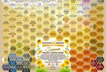 FARM - Beekeeping
